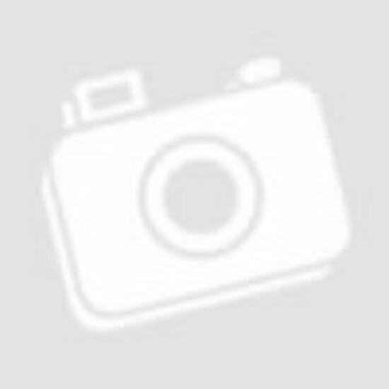 Pascal Phure White Modell 1 beltéri ajtó szabvány méretben - Festett fehér PU lakkal